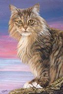 Peinture en Relief 3D - Chat maine coon assis - Virginie Trabaud