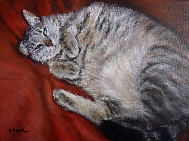 peinture chat europ en couch sur le dos toile acrylique r aliste artiste peintre virginie. Black Bedroom Furniture Sets. Home Design Ideas